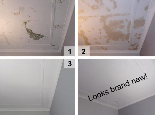Plaster Ceiling Repairs Travancore5
