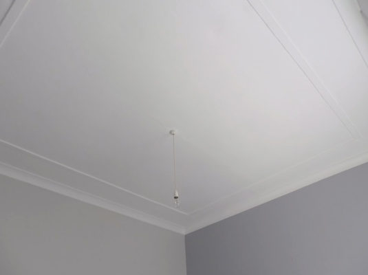 Plaster Ceiling Repairs Travancore4